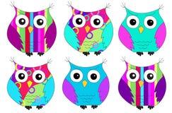 六个五颜六色的猫头鹰样式 免版税库存图片