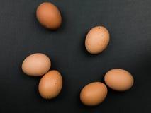 六个新鲜的自由放养的有机鸡蛋 免版税库存图片