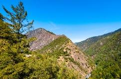 六个河国家森林(巨足兽风景小路) 免版税库存照片