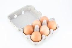 六块肌肉鸡蛋 免版税库存照片