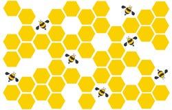 六角形蜂蜂房设计艺术和空间背景传染媒介 免版税库存图片