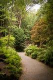 兰卡斯特公园美丽的景色  库存图片