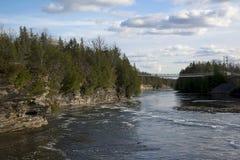 兰妮峡谷吊桥, Cambellford,安大略 免版税库存图片