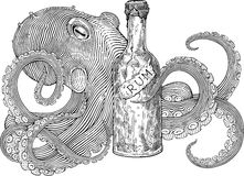 兰姆酒章鱼 库存照片