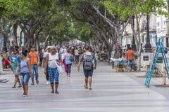 兰布拉在哈瓦那,古巴 库存照片