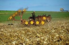 兰开斯特县, PA :领域的门诺派中的严紧派的农夫 图库摄影