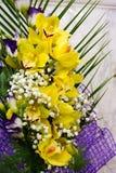 兰科是一个不同和普遍家庭开花 库存照片