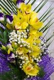 兰科是一个不同和普遍家庭开花 库存图片