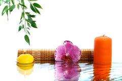 兰花、芬芳蜡烛和玉树分支在wate反射了 图库摄影