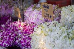 兰花出售在花市场上 库存图片