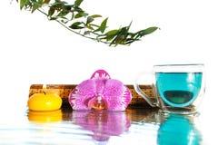 兰花和绿松石Bufferli豌豆茶 库存图片