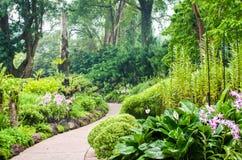 兰花庭院,一部分的植物园在新加坡 免版税库存照片