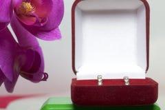 兰花开花在白色背景的特写镜头 倒挂金钟的颜色 附近有礼物的一个开放天鹅绒箱子 belove的耳环 免版税库存照片