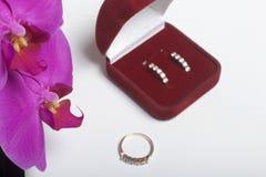 兰花开花在白色背景的特写镜头 倒挂金钟的颜色 附近有礼物的一个开放天鹅绒箱子 belove的耳环 免版税图库摄影
