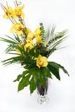兰花花瓶 库存图片