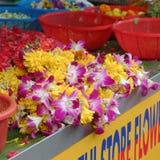 兰花被卖在坎伯车道 免版税库存图片