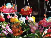 兰花轰隆泰国Krachao的庭院 曼谷 库存照片