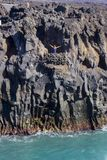 兰萨罗特岛加那利群岛海岸  免版税库存图片