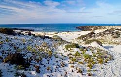 兰萨罗特岛海滩 免版税库存照片