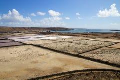 兰萨罗特岛盐沼004 免版税库存图片