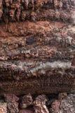 兰萨罗特岛 免版税库存图片