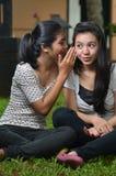 共享故事或闲话的女孩 库存照片