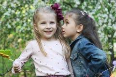 共享秘密在春天庭院的女孩 免版税库存图片
