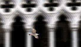 共和国总督宫殿,威尼斯,意大利 图库摄影