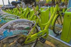共有的自行车 库存照片