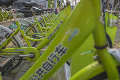 共有的自行车 库存图片