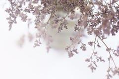 关于冒险的激动人心的诱导行情在被弄脏的花背景 免版税库存照片