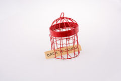 关于在与金属棒的一只红色鸟房子笼子安置的学校的笔记 免版税库存照片