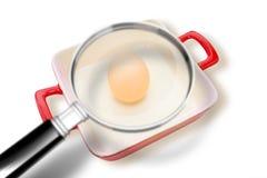 关于沙门氏菌细菌的质量管理在烹调泛HACCP危险分析和重要控制点概念的鸡蛋 免版税库存照片