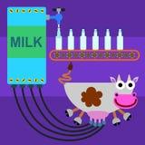 牛奶生产 库存例证