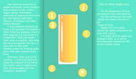 关于苹果汁有利物产和准备汁液方法的Infographic  皇族释放例证