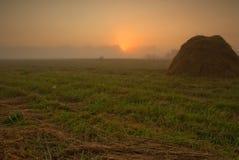 关于草甸的黎明 艺术性的详细埃菲尔框架法国水平的金属巴黎仿造显示剪影塔视图的射击 免版税库存照片