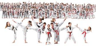 关于训练空手道武术的小组的拼贴画孩子 图库摄影