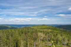 关于黑森林的全景从Friedrichsturm 免版税库存图片