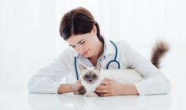关心宠物兽医 图库摄影