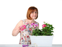 关心对室内植物的相当中年妇女画象  库存图片