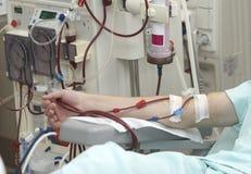 关心透析健康肾脏医学 库存图片