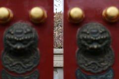 关进笼子在春天 免版税图库摄影