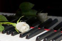关键字钢琴上升了 免版税库存照片