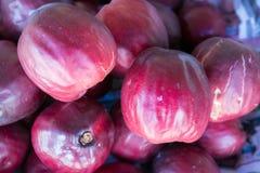 关闭'Mamiew pomerac'果子在泰国新鲜市场上 著名热带水果推荐给游人和旅客 库存图片