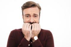 关闭一个害怕年轻有胡子的人的画象 库存图片