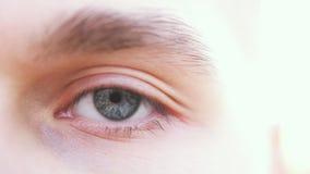 关闭一只灰色男性眼睛 一个人的一只灰色眼睛的细节看照相机的 免版税图库摄影