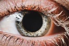 关闭一只蓝绿色女性眼睛 免版税库存照片