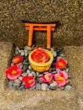 关闭一套cattleya兰花红色花和石头作为在扔石头的地面的供奉在日本 免版税图库摄影