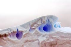关闭一座冰山在南极洲 免版税库存图片