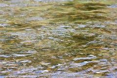 关闭一条流动的河 免版税图库摄影